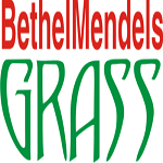 Artificial Grass Nigeria  -08033264815,08036911296